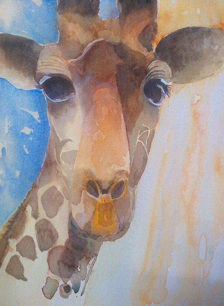 Portrait of a bright and happy giraffe drawing in watercolour by artist Katie Lloyd